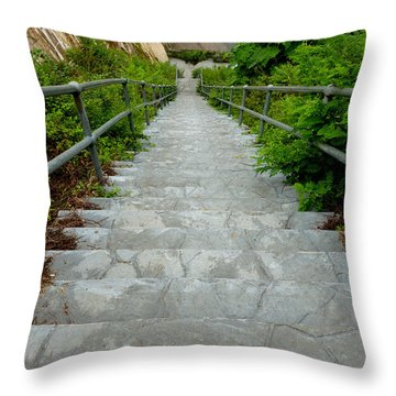 Going Down Throw Pillow by Mark Dodd