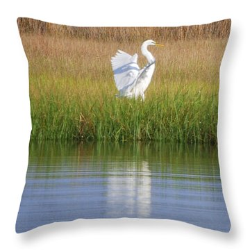 Going Going . . . .  Throw Pillow