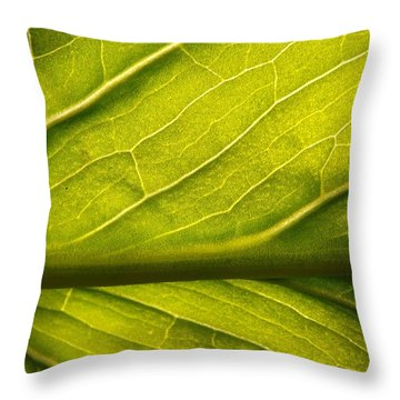 Throw Pillow featuring the photograph Going Green by Gerald Strine