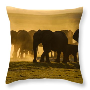 Gold Dust Gathering Throw Pillow