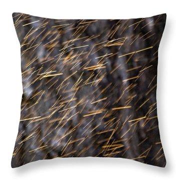 Throw Pillow featuring the photograph Gold Rain by Raffaella Lunelli