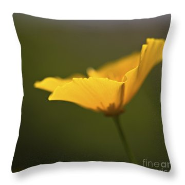 Golden Afternoon. Throw Pillow by Clare Bambers