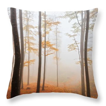 Golden Autumn Forest Throw Pillow by Evgeni Dinev