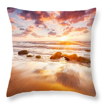 Golden Beach Throw Pillow by Evgeni Dinev