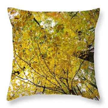 Golden Canopy Throw Pillow by Rick Berk