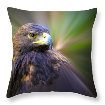 Golden Eagle Fade Throw Pillow by Steve McKinzie