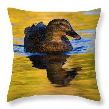 Golden Hen Throw Pillow by Mike  Dawson