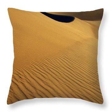 Golden Hour Throw Pillow by Bob Christopher