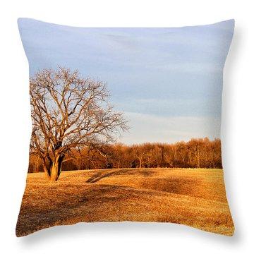 Throw Pillow featuring the photograph Golden Hour Shadows by Rachel Cohen