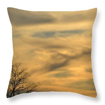 Golden Hue Throw Pillow