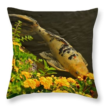 Golden Koi Throw Pillow by Kirsten Giving