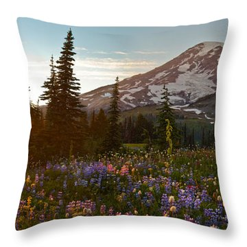 Golden Meadows Of Wildflowers Throw Pillow by Mike Reid