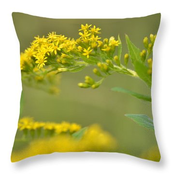 Golden Perch Throw Pillow