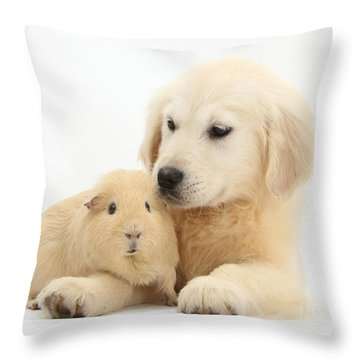 Golden Retriever Pup And Yellow Guinea Throw Pillow by Mark Taylor