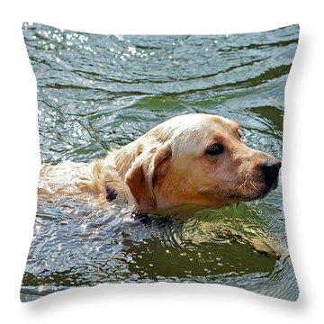 Golden Retriever Swimming Close Throw Pillow by Susan Leggett