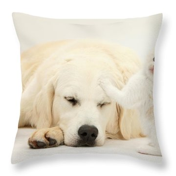 Golden Retriever With Two Kittens Throw Pillow by Mark Taylor