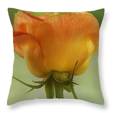 Throw Pillow featuring the photograph Golden Rose by Joan Bertucci