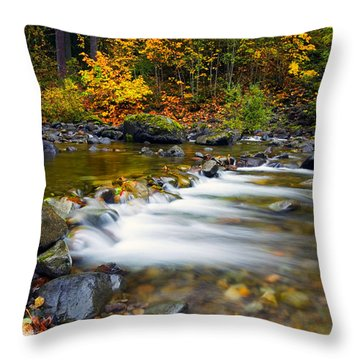 Golden Shores Throw Pillow by Mike  Dawson