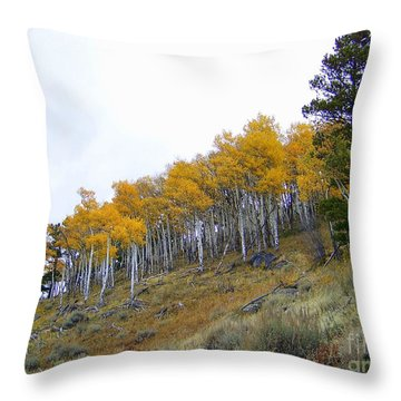 Golden Stand Throw Pillow by Dorrene BrownButterfield
