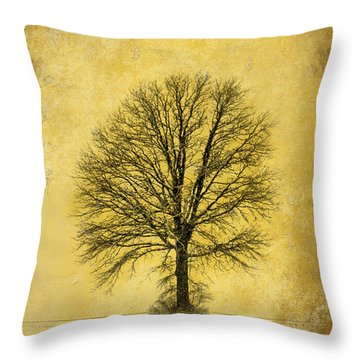 Throw Pillow featuring the photograph Golden Tree by Mary Timman