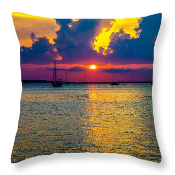 Golden Waters Throw Pillow by Shannon Harrington