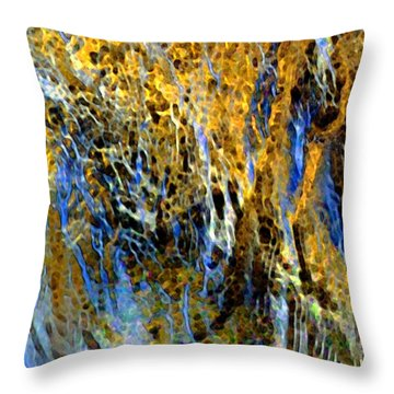 Golden Weeping Willow Throw Pillow by Dale   Ford