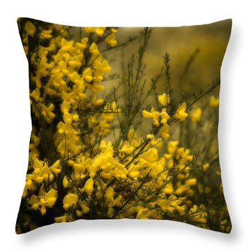 Goldenrod Throw Pillow : Goldenrod Photograph by Bonnie Bruno
