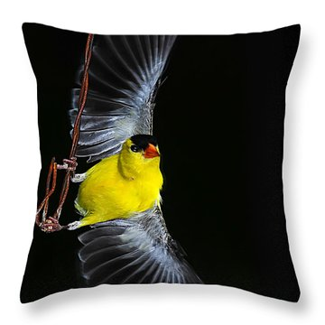 Throw Pillow featuring the photograph Goldfinch High Wire Act by Randall Branham