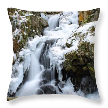 Goldmine Falls Throw Pillow