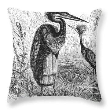 Goliath Heron Throw Pillow by Granger