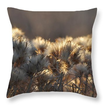 Throw Pillow featuring the photograph Gone To Seed by Fran Riley