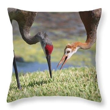 Good Catch Throw Pillow by Carol Groenen