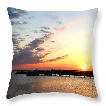 Goodnight Sound Vi Throw Pillow by Linda Mesibov