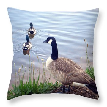 Goose And Ducks Throw Pillow by Kelly Hazel