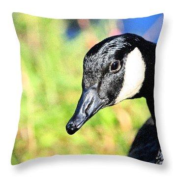Goose Art Throw Pillow by Karol Livote