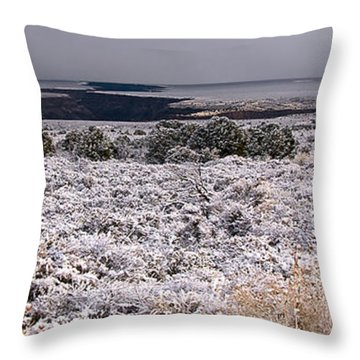 Gorge Snow Throw Pillow