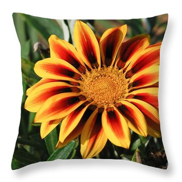 Gorgeous Beauty Throw Pillow by Fotosas Photography
