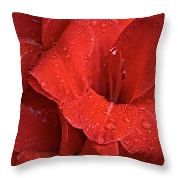 Gorgeous Glads Throw Pillow by Susan Herber