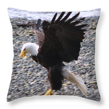 Got It Throw Pillow by Kym Backland