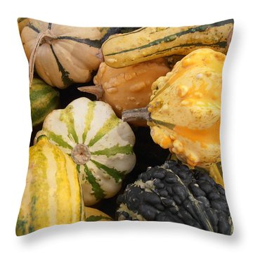 Gourds Throw Pillow by Kimberly Perry