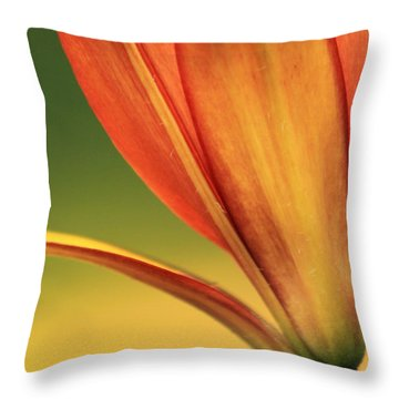 Graceful Throw Pillow