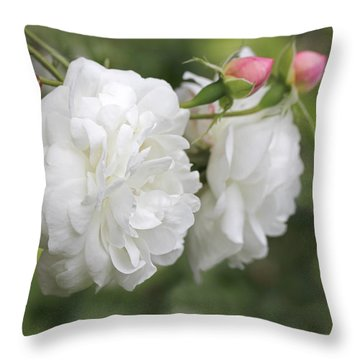 Graceful White Rose And Pink Rosebuds Throw Pillow by Jennie Marie Schell