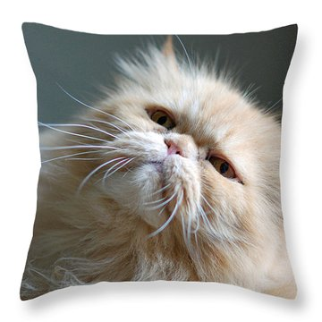 Gracie Throw Pillow by Lisa Phillips