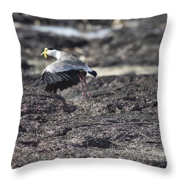 Gracious Ascent Throw Pillow by Douglas Barnard
