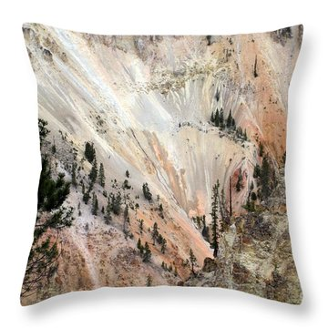 Throw Pillow featuring the photograph Grand Canyon Colors Of Yellowstone by Living Color Photography Lorraine Lynch