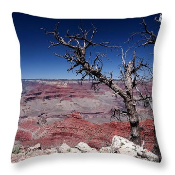 Throw Pillow featuring the photograph Grand Canyon Number One by Lon Casler Bixby