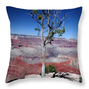 Throw Pillow featuring the photograph Grand Canyon Number Two by Lon Casler Bixby