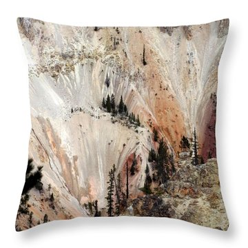 Throw Pillow featuring the photograph Grand Canyon Of Yellowstone Vertical by Living Color Photography Lorraine Lynch