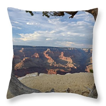 Grand Canyon Tree Throw Pillow