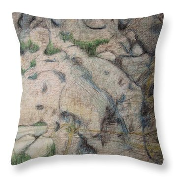 Grand Dad's Roots Throw Pillow by Diane montana Jansson